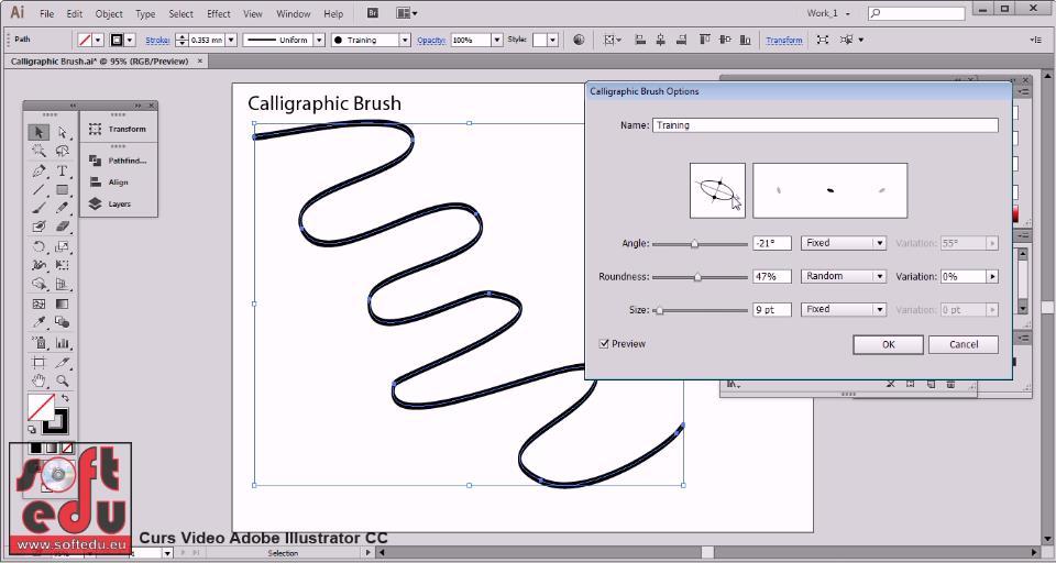 Curs Adobe Illustrator Cc 2017 Grafic Vectorial Cursuri